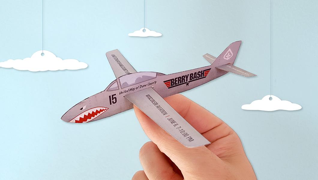 berry-bash-plane